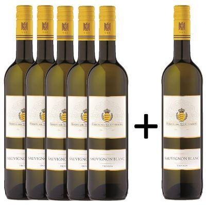 5 + 1 Sauvignon Blanc